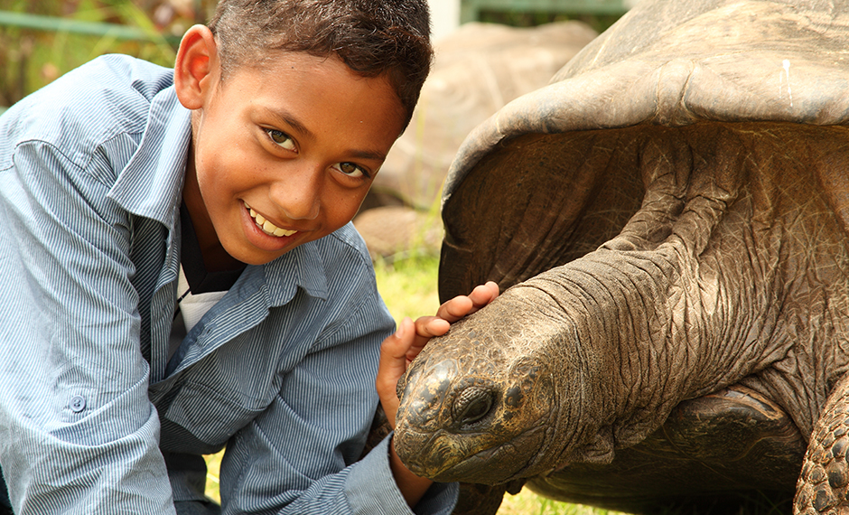 Visit Giant Tortoises during a Family Trip to Mauritius